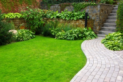 Hydroseeding for Your Best Possible Lawn