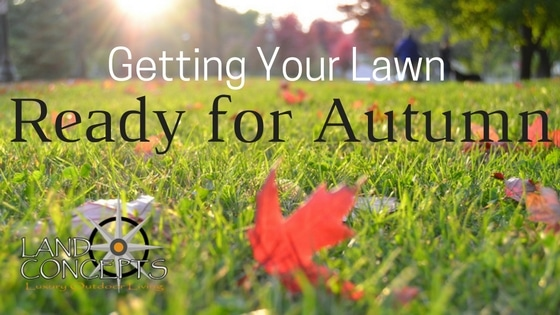Getting Your Lawn Ready for Autumn