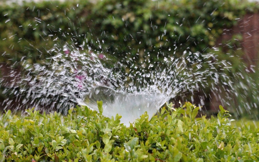 Tips for the Best Spring Irrigation Startup