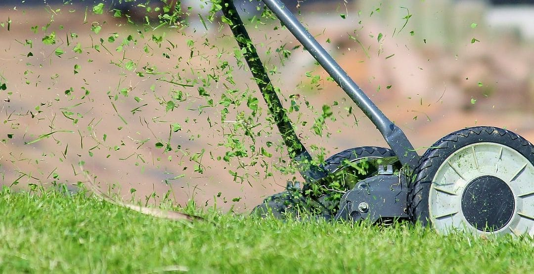 What is Hydroseeding and Why is it Important?