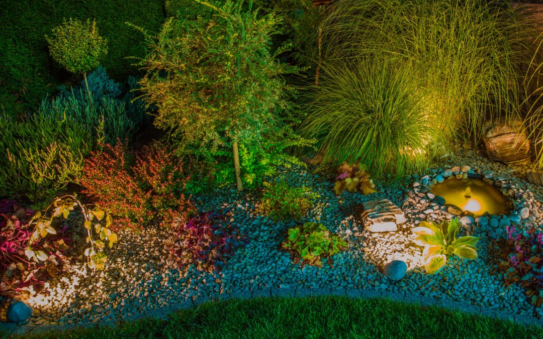 Getting Started with Landscape Lighting