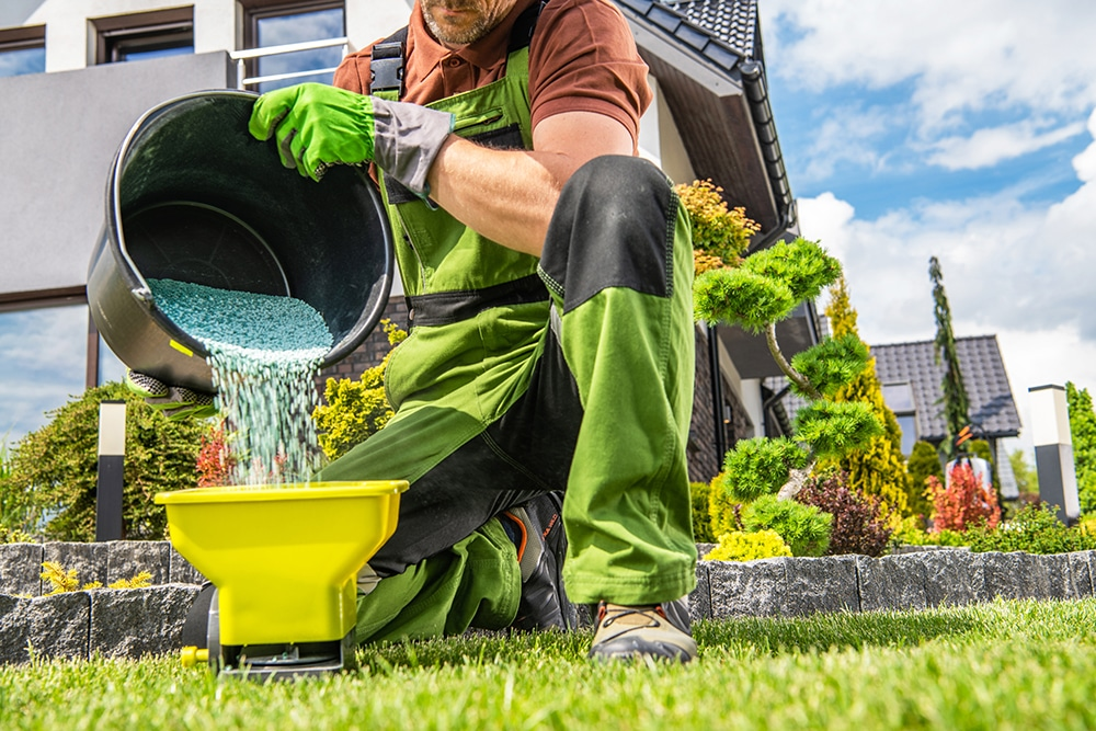 Tips for Fertilizing Your Lawn This Summer
